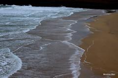 Trump at the beach (mootzie) Tags: beachsandseapatternsfrothnesslewisprofile trump