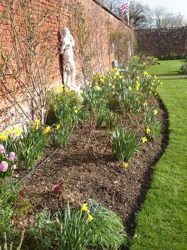 February - Rose Garden