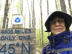 Cindy Ackerson (North Country Trail) Tags: hike100nct hikethenct ilovethenct northcountrytrail nct challenge greatnorthcollective explore exploremore discover discovermore blueblazes upnorth greatoutdoors adventuremore hiking hikemoreworryless outdoors nature backpacking camping findyourway findyourtrail findyourpark getoutside whyihike outdoortherapy michigan puremichigan lowerpeninsula smittenwiththemitten hikingwithdogs dogs dog 45thparallel friends