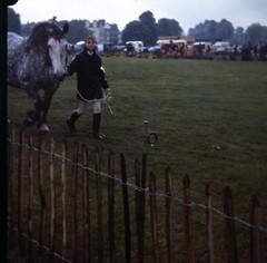 img414 (foundin_a_attic) Tags: 1980 horse cambridge midsummercommon