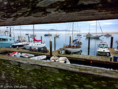 At Rest Between The Lines (lorinleecary) Tags: water harbor boats morrobay hills fence