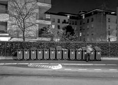 2020-01-20 - Lundi - 20/366 - Poubelle - (Serge Reggiani) (Robert - Photo du jour) Tags: 2020 janvier france femme nb noiretblanc poubelle sergereggiani enligne rueilmalmaison ramassage poubelles sortiedespoubelles