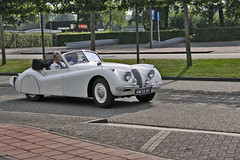 Jaguar XK 120 1954 (1962) (Le Photiste) Tags: clay jaguarcarsltdwhitleycoventryengland jaguarxk120 cj 1954 jaguarxk120dropheadcoupedhc britishsportscar elburgthenetherlands oddvehicle oddtransport rarevehicle perfectview perfect beautiful nuestrasfotografias mostrelevant mostinteresting afeastformyeyes aphotographersview autofocus artisticimpressions alltypesoftransport anticando blinkagain beautifulcapture bloodsweatandgear bestpeople'schoice gearheads creativeimpuls cazadoresdeimágenes carscarscars canonflickraward digifotopro damncoolphotographers digitalcreations django'smaster friendsforever finegold fairplay fandevoitures greatphotographers groupecharlie ineffable infinitexposure iqimagequality interesting inmyeyes lovelyflickr livingwithmultiplesclerosisms myfriendspictures mastersofcreativephotography niceasitgets photographers prophoto photographicworld planetearthbackintheday planetearthtransport photomix soe simplysuperb showcaseimages slowride simplythebest simplybecause thebestshot thepitstopshop theredgroup thelooklevel1red themachines transportofallkinds vividstriking wow wheelsanythingthatrolls yourbestoftoday oldtimer