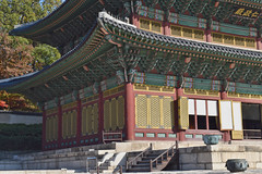 Seoul November 2019 007