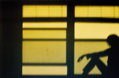 Shadow Play At Dusk (self portrait) (Gabriella Ollandini) Tags: silhouette self portrait shadow dusk woman lady 35mm filmisnotdead filmphotography film filmcamera contrast istillshootfilm filmnegative yellow kodak ricoh 50mm analog analogue human night stillness colorplus sitting sunset kr5 quiet analogica