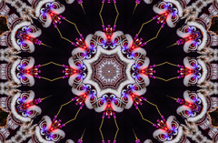 chinese new year is coming (pbo31) Tags: kaleidoscope kaleidoscopic sanfrancisco california pattern color january 2020 boury pbo31 nikon d810 winter night dark art chinatown newyear chinese dragon city urban holiday eyes head red black dance