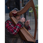 Cambridge Street-Harpist