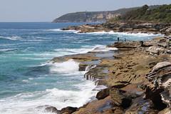 looking south from Curl Curl, Sydney (Poytr) Tags: curlcurl coast northernbeaches sydneyaustralia waves rocks rock hawkesburysandstone fishing rockfishing fisherman fishermen