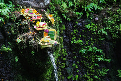 Traditional Balinese offerings (Tiket2) Tags: asia asiatravel indonesia travel travelpic travelphoto indonesian amazing stunning tiket2 creativecommons free freephoto attribution tourism tourist exotic tropical bali balinese offering hindu sacred traditional spirit spiritual