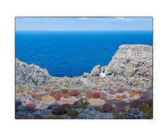 A Walk to the Northern End (My digital Gallery) Tags: kapathos dodekanes greece griechenland europe eu griechischeinseln greekislands tristomo north sea chapel kapelle