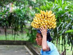 Balinese woman carrying bananas (Tiket2) Tags: asia asiatravel indonesia travel travelpic travelphoto indonesian amazing stunning tiket2 creativecommons free freephoto attribution tourism tourist exotic tropical woman portrait bali balinese yellow banana fruit fruits
