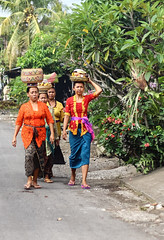 Balinese women carrying traditional Hindu offering to the temple (Tiket2) Tags: asia asiatravel indonesia travel travelpic travelphoto indonesian amazing stunning tiket2 creativecommons free freephoto attribution tourism tourist exotic tropical bali balinese hindu traditional offering temple