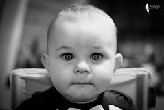 17-365 (JSTAR377) Tags: 365 challenge baby portrait child toddler blackandwhite