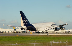 Giant touchdown (TolgaEastCoast) Tags: lufthansa miami airbus a340 a380 frankfurt munich lh 462 463 international airport florida airplane aviation planes spotting