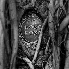 sign of the times (a.pierre4840) Tags: olympus om3 zuiko 55mm f12 35mmfilm kodak kodaktmax400 11 squareformat bw blackandwhite noiretblanc hongkong sign tree fotor