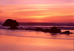 Rocks in the Surf, Oregon Coast (Gary L. Quay) Tags: oregoncoast sunset silhouteet film 6x9 garyquay sea ocean seascape coastline tide waves filmphotography