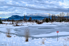 Danger Thin Ice! Jerry Sulina Park /Maple Ridge Dyke (SonjaPetersonPh♡tography) Tags: mapleridge mapleridgedykes jerrysulinapark britishcolumbia canada bc nikon nikond5300 afsdxnikkor18300mmf3563gedvr winter winterscene goldenears goldenearsprovincialpark goldenearspark snow mountains mountainlandscape mountainpeaks ice pond frozen nature trails walkingtrails dyke landscape scenic scenery lake marsh