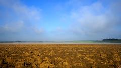 PAYSAGES DE PICARDIE 693 (Alain Père Fouras) Tags: picardie paysage landscape champ nature campagne labour brume brouillard ciel nuages hiver janvier froid