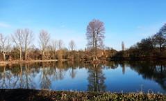 Ein schöner Wintertag... (Zatato) Tags: wasser park bäume