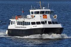 MV Ali Cat - Gourock - 18-01-20 (MarkP51) Tags: sea water sunshine boat ship sunny vessel nikon d500 d7200 nikon24120f4vr nikon70200f4vr nikon200500f56vr nikonafp70300fx scotland calmac gourock firthofclyde caledonianmacbrayne mvalicat ferry