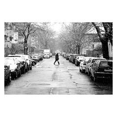 . (halagabor) Tags: bnw blackandwhite monochrome street streetphoto streetphotography winter snow snowy snowing budapest újpest hungary nikon nikonfe2 nikkor 105mm 35mm film filmisnotdead filmcamera filmisalive filmphotography ishootfilm ilfordfilm istillshootfilm hp5 ilford ilfordhp5 city citylife analog analogcamera grain grainy pushed 1600