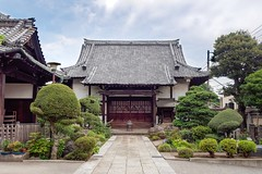 Temples et jardins de Tokyo /Japon album (geolis06) Tags: geolis06 asia asie japan japon tokyo 日本 2017 bouddha buddha olympuspenf temple bouddhisme monastery monastère
