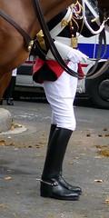 bootsservice 19 2150220 (bootsservice) Tags: armée army militaire militaires military uniforme uniformes uniform uniforms cavalerie cavalry cavalier cavaliers rider riders bottes boots « ridingboots » weston eperons spurs casque helmet gants gloves gendarmerienationale gendarmes garderépublicaine cheval chevaux horse horses parade défilé 14 juillet bastilleday champselysées paris