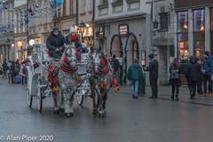 Horses & Carriage, Krakow (PapaPiper) Tags: grandsquare rynekgłówny poland krakow krakówoldtown horses carriage tourists appaloosa workinghorses