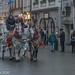 Horses & Carriage, Krakow