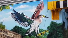 Awes...Seymour, Victoria... (colourourcity) Tags: streetartaustralia streetartnow street streetartseymour seymour victoira colourourcity colourourcityseymour awesome nofilters 90degreesart awes awesy dannyawes heron seymourviadut streetart graffiti