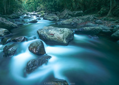 Crystal Cascades (Cameron de Jong) Tags: stream nature rainforest queensland australia cairns tourism hiking outdoors brook river creek flowing water