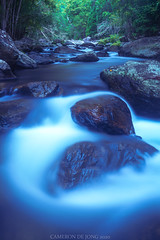 The artery of the rainforest (Cameron de Jong) Tags: waterfall stream nature rainforest queensland australia cairns tourism hiking brook river creek flowing water
