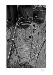 Circular #2 (radspix) Tags: pentax super a smc pentaxa 3570mm f4 arista edu ultra 200 pmk pyro