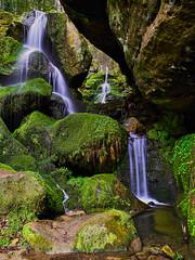 Lichtenhainer Wasserfall (Naturportal) Tags: panasonic dmcgx8 olympus m12100mm f40 elbsandsteingebirge sächschische schweiz wasserfall waterfall mountain felsen berge rocks