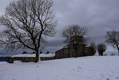 Gaur epelago. (eitb.eus) Tags: eitbcom 3108 g1 tiemponaturaleza tiempon2020 nieve nafarroa arakil txominrezolaclemente