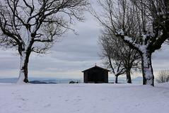 San Migelen. (eitb.eus) Tags: eitbcom 3108 g1 tiemponaturaleza tiempon2020 nieve nafarroa arakil txominrezolaclemente