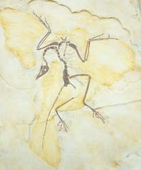 DSC_4153.jpg (bobosh_t) Tags: boonshoftmuseum boonshoft naturalhistory museum