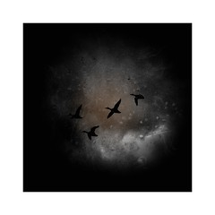 TI-200118-75-K1 - Ducks (b_kohnert) Tags: outdoor clouds sky birds animals painting digitalpainting digitalart