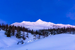 Mount Kerling (Einar Schioth) Tags: mtkerling mountain sky bluesky clearsky trees tree snow winter day canon clouds vividstriking blusky nationalgeographic ngc nature landscape photo picture frost outdoor iceland ísland ice einarschioth