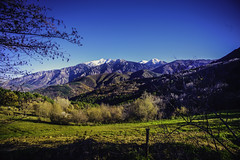 Canigó landscape (Bruno Casals) Tags: wide angle vivitar 19mm 138 mc lens pkar pentax k1 landscapephotography
