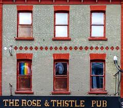 6 Windows (Karen_Chappell) Tags: windows window brick building pub architecture red grey sign black downtown city urban stjohns newfoundland nfld canada eastcoast avalonpeninsula atlanticcanada pattern geometry geometric canonef24105mmf4lisusm