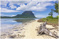View of Le Morne Brabant from Île Aux Bénitiers (Sharon Emma Photography) Tags: log driftwood îleauxbénitiers island desertisland beach desertedbeach ownbeach sea bbq morninglight morningsunshine sad history abolitionofslavery worldheritagesite unesco lemorneterritoiremarron thevalleyofbones slaves eponymousbasalticmonolith peninsula rock volcanicrock lemornebrabant lemorne landscape postcard mauritius maurice republicofmauritius indianocean africa mascareneislands french dutchcolony perfect paradise desertedparadise sunlight sun pictureperfect picturesque view nature naturalworld wildlife wild ngc beautiful pretty ideal stunning peaceful nikon nikond7200 d7200 sharonemmaphotography sharongoldring sharonemmagoldring sharondowphotography sharondow february2018 2018 wintersun holiday travelling abroad
