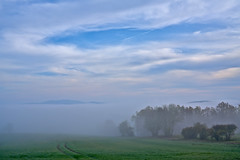 Misty (pstenzel71) Tags: deutschland rudolstadt landschaft wald mist fog thüringen thuringia darktable nebel ilce7rm3 sel24105g