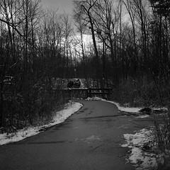 On the Path (Alex Luyckx) Tags: oakville ontario canada mccraneyvalleypark mccraneyvalley urban park greenspace sheridan sheridancollege trafalgarroadcampus campus college school institution winter snow walk hike startofterm escape frankeheidecke rolleiflex rolleiflex28f tlr 120 6x6 square mediumformat carlzeissplanar80mm128 lomography kino lomographyberlin400 berlin400 orwon74 asa400 kodak hc110 kodakhc110 dilutionb 131 epsonv700 adobephotoshop bw blackwhite photography film filmphotography believeinfilm filmisalive filmisnotdead