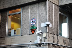 Is Your Plant Watching You ? (standhisround) Tags: windowswednesday windows building cameras bfi southbank lambeth london waterloo uk england novel painting britishfilminstitutebuilding offices archives hww