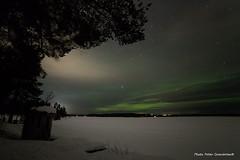 Northern light! (petergranström) Tags: approved northern lights norrsken snow snö lake sjö trees träd pine tall stars stjärnor clouds moln sky himmel mountain berg twig kvist