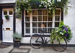 Decorative Bicycle (Jocelyn777 - Celebrating Europe) Tags: flowers plants foliage flowerbasket doorsandwindows windows architecture buildings facades oxford bicycle