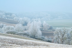 Winter Landscape 2020 (Bluespete) Tags: landscape landschaft winter winterlandschaft winterlandscape reif rauhreif kalt cold