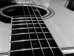 21/366: bring on the blues (Zoo Human) Tags: 366the2020edition 3662020 day21366 21jan2020 guitar music monochrome string macro instrument