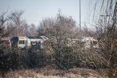 60073, Toton (JH Stokes) Tags: class60 60073 dbcargo toton sandiacre diesellocomotives depot trains trainspotting t tracks railways transport photography locomotives